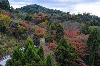 Kiyomizu-dera temple during fall.