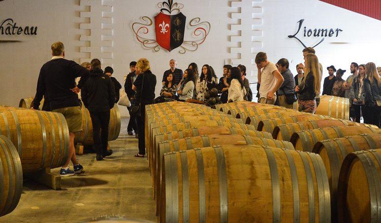 bordeaux wine tour