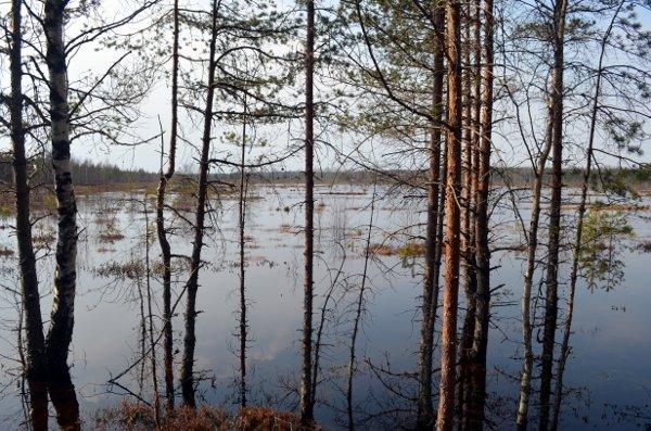 haunted estonia