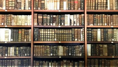 library as a travel resource