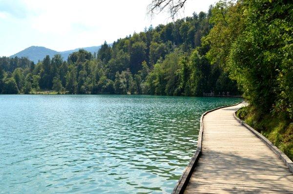 activites in lake bled